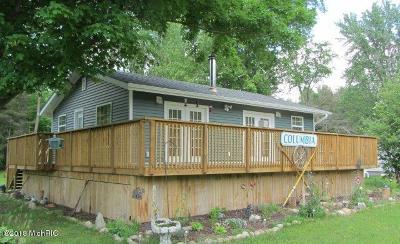 Isabella County, Mecosta County, Montcalm County, Newaygo County, Osceola County Single Family Home For Sale: 8484 50th Avenue