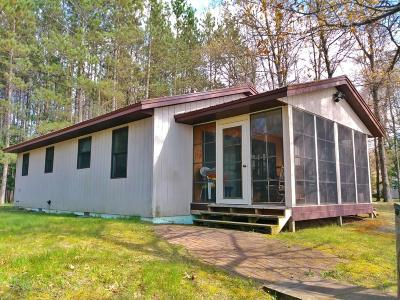 Isabella County, Mecosta County, Montcalm County, Newaygo County, Osceola County Single Family Home For Sale: 577 S Baldwin Avenue
