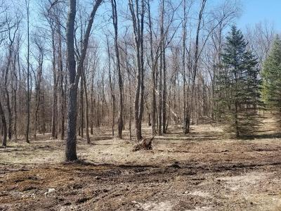 Grand Rapids, East Grand Rapids Residential Lots & Land For Sale: 6793 Burton Street SE