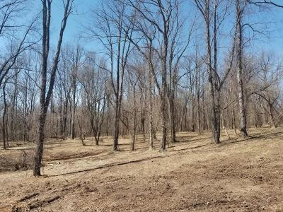 Grand Rapids, East Grand Rapids Residential Lots & Land For Sale: 6797 Burton Street SE