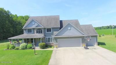 Osceola County Single Family Home For Sale: 21941 M-115