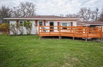 Benton Harbor Single Family Home For Sale: 3028 N M63