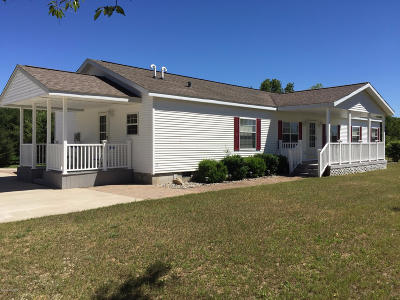 Lake County Single Family Home For Sale: 8832 N Johnson Road
