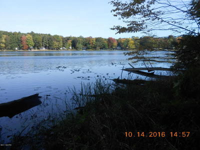 Oceana County Residential Lots & Land For Sale: Old Campground Road #5
