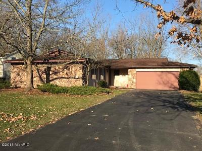 Plainwell Single Family Home For Sale: 110 Walnut Woods Court