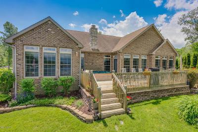 Vandalia MI Single Family Home For Sale: $514,900