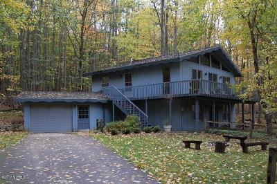 Canadian Lakes MI Single Family Home For Sale: $139,000