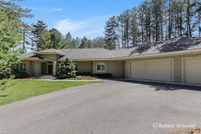 Grand Rapids Single Family Home For Sale: 3571 Meadowood Trails Drive SE