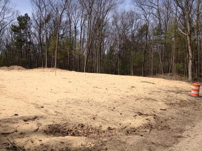 Oceana County Residential Lots & Land For Sale: Railroad Road