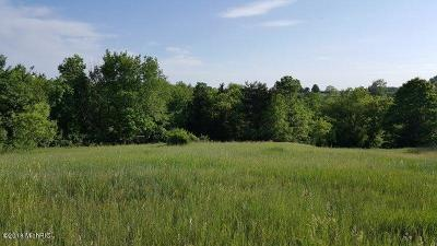 Belding Residential Lots & Land For Sale: 7619 Dream Isle Drive NE