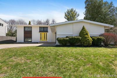 Grand Rapids Single Family Home For Sale: 1406 Laurel Avenue SE