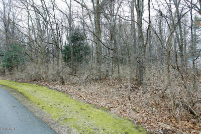 Paw Paw Residential Lots & Land For Sale: 35 1/2 Street #Parcel B