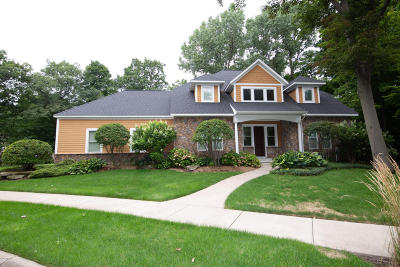 South Haven Single Family Home For Sale: 21 Bluffwood Drive