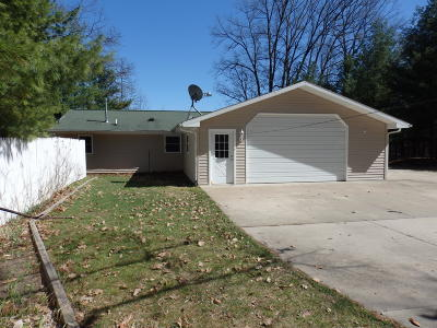 Irons Single Family Home For Sale: 9101 W 5 Mile Road
