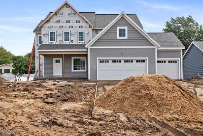 Jenison Single Family Home For Sale: 9066 Cedar Lake Drive