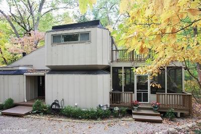 New Buffalo Single Family Home For Sale: 19475 Dogwood Drive