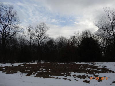 Muskegon Residential Lots & Land For Sale: 5249 Bittersweet Drive
