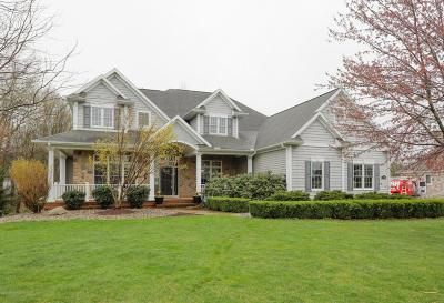 Van Buren County Single Family Home For Sale: 8761 Pine Island Court S