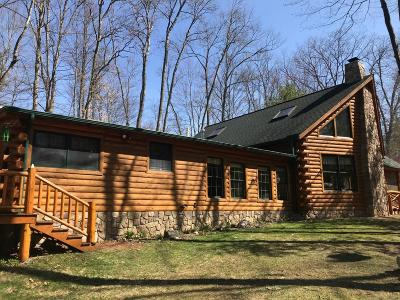 Newaygo County Single Family Home For Sale: 314 N Cottonwood Avenue