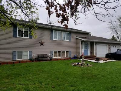 Clinton County Single Family Home For Sale: 307 E Herbison Drive