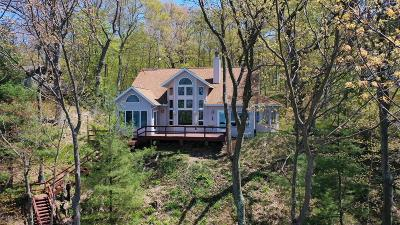 Coloma MI Single Family Home For Sale: $1,075,000