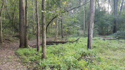 Grand Rapids MI Residential Lots & Land For Sale: $39,900