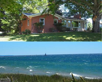 Ludington Single Family Home For Sale: 7235 W Orchard Avenue