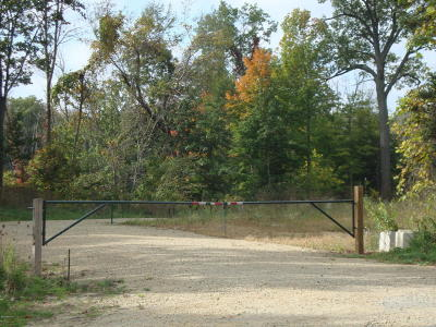 Berrien County Residential Lots & Land For Sale: 9100 Union Pier Road