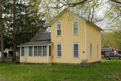 Allegan County Single Family Home For Sale: 147 Park Drive