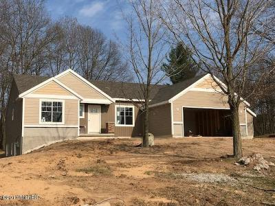 Single Family Home For Sale: 11751 Ridge Water Drive