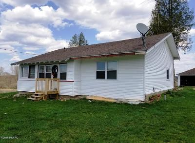 Big Rapids MI Single Family Home For Sale: $209,900