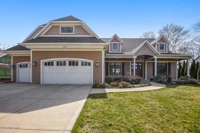 Benton Harbor Single Family Home For Sale: 180 Higman Park Hill