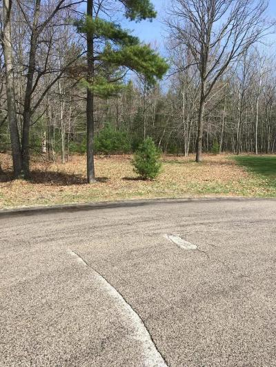 Mason County Residential Lots & Land For Sale: Ridgeview Court #Lot 15