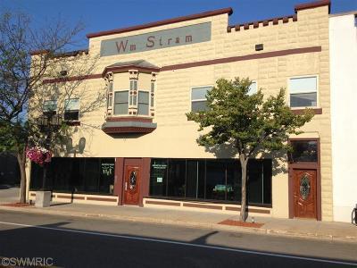 Ludington Condo/Townhouse For Sale: 210 S James Street #205