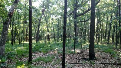 Belding Residential Lots & Land For Sale: 814 Wildlife Trail