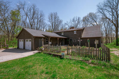 Niles Single Family Home For Sale: 28829 Redfield Run