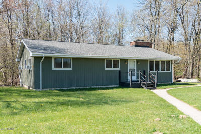 Allegan County Single Family Home For Sale: 988 Blue Star Highway
