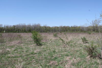 Cass County Residential Lots & Land For Sale: 512 Turkey Trail Drive