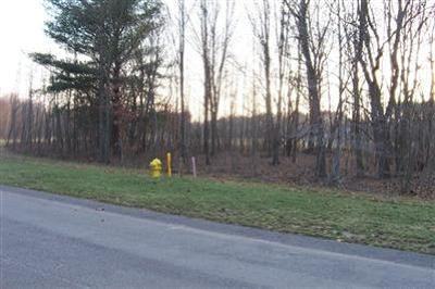 Saugatuck, Douglas Residential Lots & Land For Sale: 3329 Palmer Drive