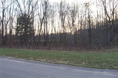 Saugatuck, Douglas Residential Lots & Land For Sale: 3317 Palmer Drive