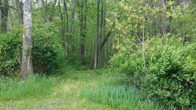 Wayland Residential Lots & Land For Sale: 841 Geneva Drive