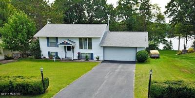 Scottville Single Family Home For Sale: 1717 W Crystal View Road