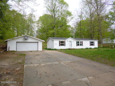 Allegan County Single Family Home For Sale: 2521 Lake Drive