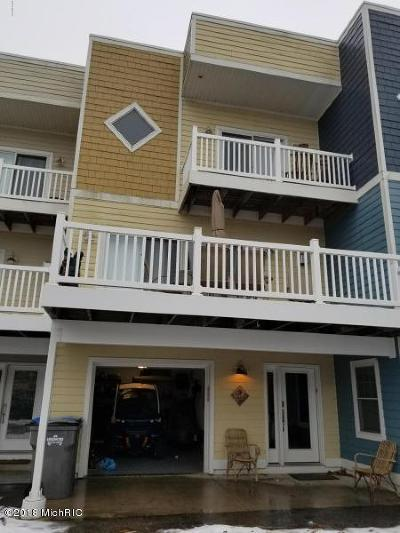 New Buffalo Condo/Townhouse For Sale: 9 Diamond Point Lane