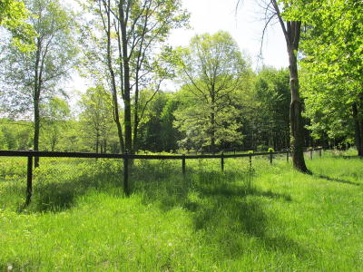 Cassopolis Residential Lots & Land For Sale: M-60