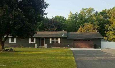 Big Rapids Single Family Home For Sale: 19775 11 Mile Road