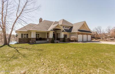 Grand Rapids Single Family Home For Sale: 12514 Horseshoe Lake Drive