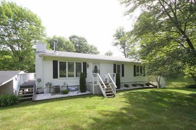 Plainwell Single Family Home For Sale: 12570 Merlau Road
