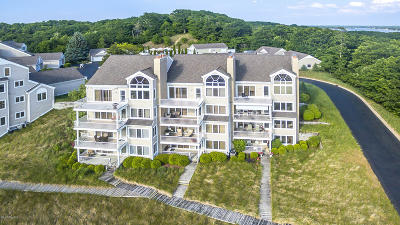 Holland, West Olive Condo/Townhouse For Sale: 702 Spyglass Hill
