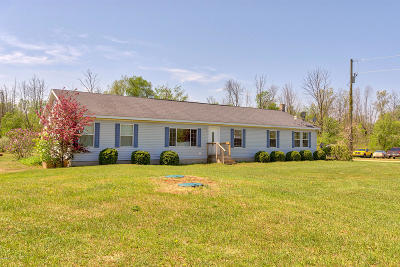 Gratiot County Single Family Home For Sale: 11791 Roggy Road